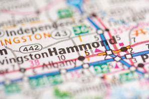 Autókölcsönzés Amerikai Egyesült Államok, Hammond, LA