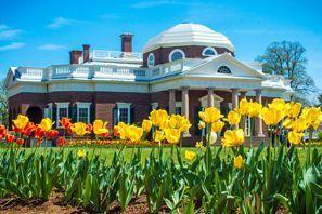 Autókölcsönzés Amerikai Egyesült Államok, Monticello