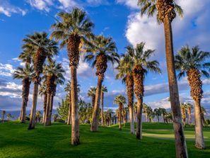 Autókölcsönzés Amerikai Egyesült Államok, Palm Desert