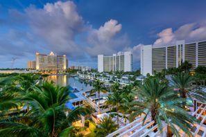 Autókölcsönzés Amerikai Egyesült Államok, Palm Harbor