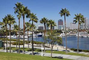 Autókölcsönzés Amerikai Egyesült Államok, Palm Harbour